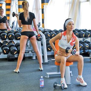 Фитнес-клубы Алатыря